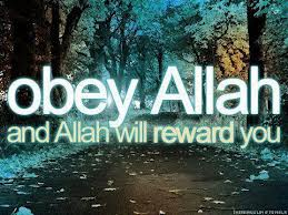 tips to increase your obedience to Allah