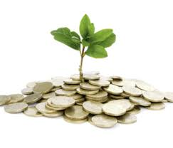 what are Islamic mutual funds