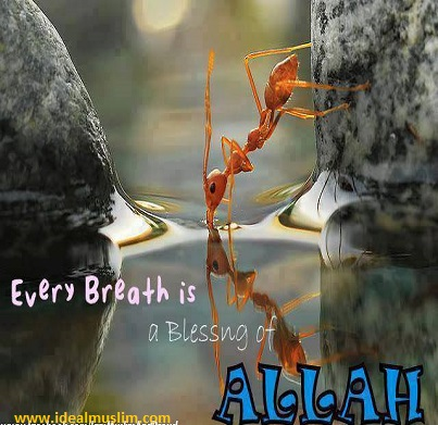 every breath Facebook